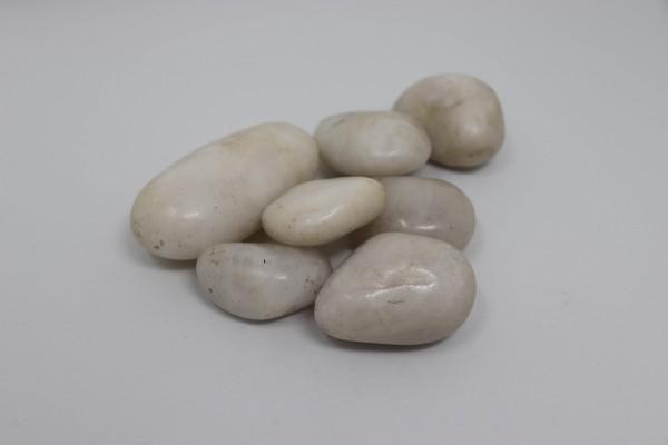 80kg Polierter Kiesel Flusskiesel Kieselsteine Gartenkies Zierkies weiß